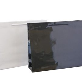 Medium Lanscape bag Gloss 300 x 380 x 100