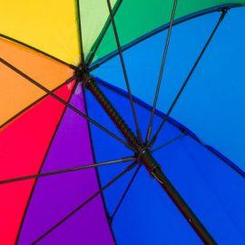 Savvie-Rainbow-frame
